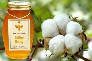 Хлопковый мёд до кристализации