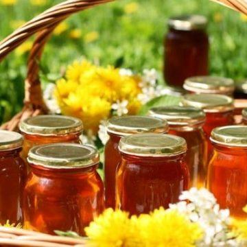Молочайный мёд