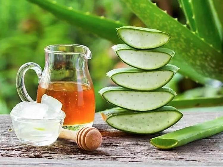 Алое рецепты приготовления лекарства с мёдом