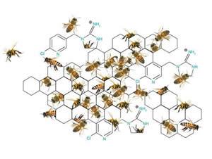 Химический состав меда
