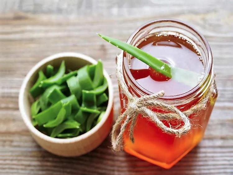 Как приготовить алоэ с мёдом для иммунитета