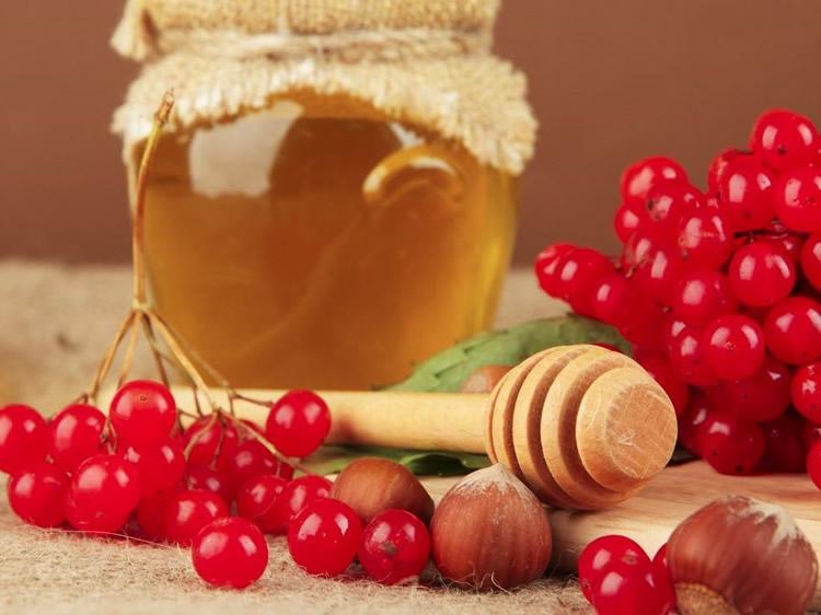 Калина с мёдом рецепт от давления
