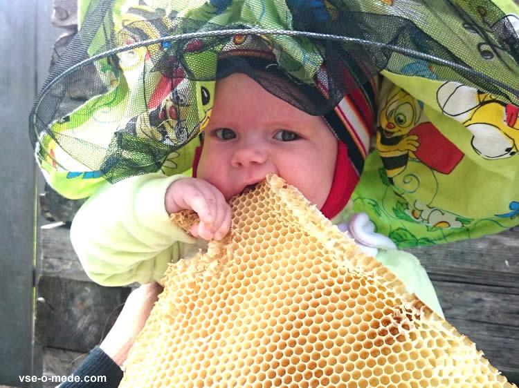 Мёд в сотах можно глотать воск